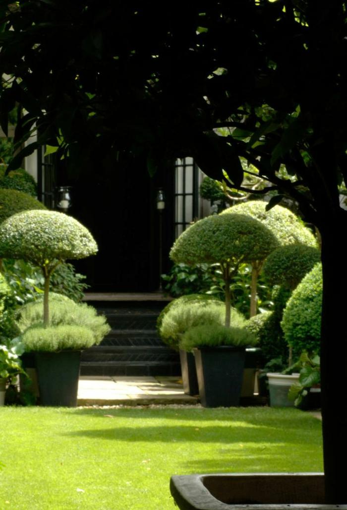 jardin-paysager-bonzais-en-pots-de-fleurs