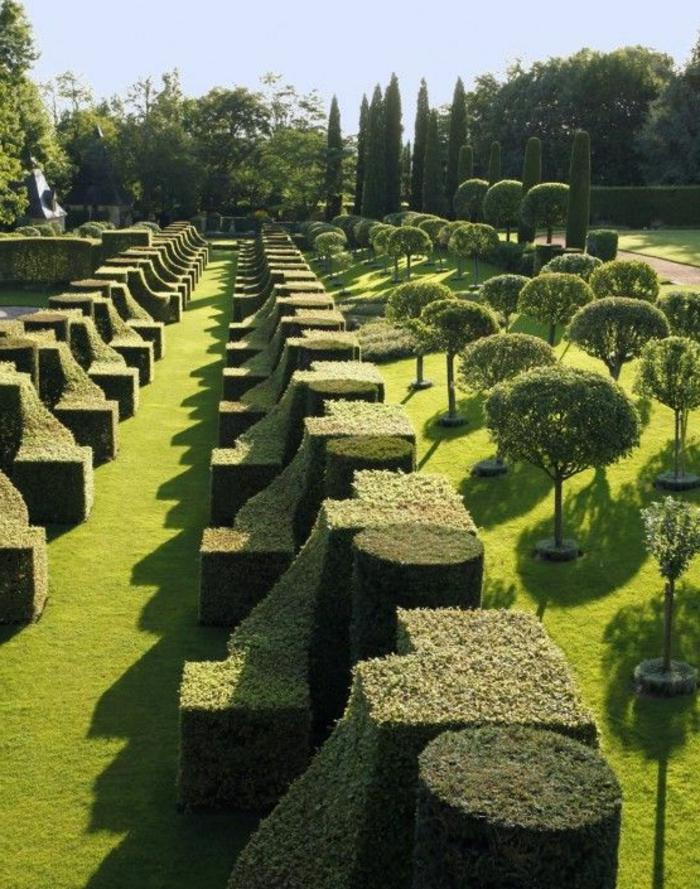 jardin-paysager-buissons-taillés