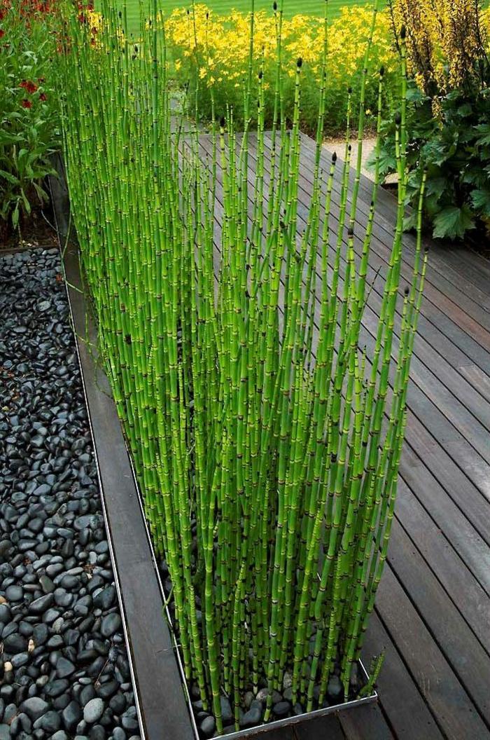 jardin-paysager-herbe-magnifique-et-terrasse