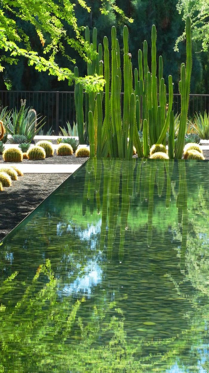 jardin-paysager-massifs-avec-piscines-modernes