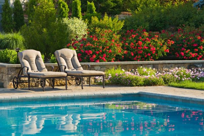 jardin-paysager-massifs-avec-piscines