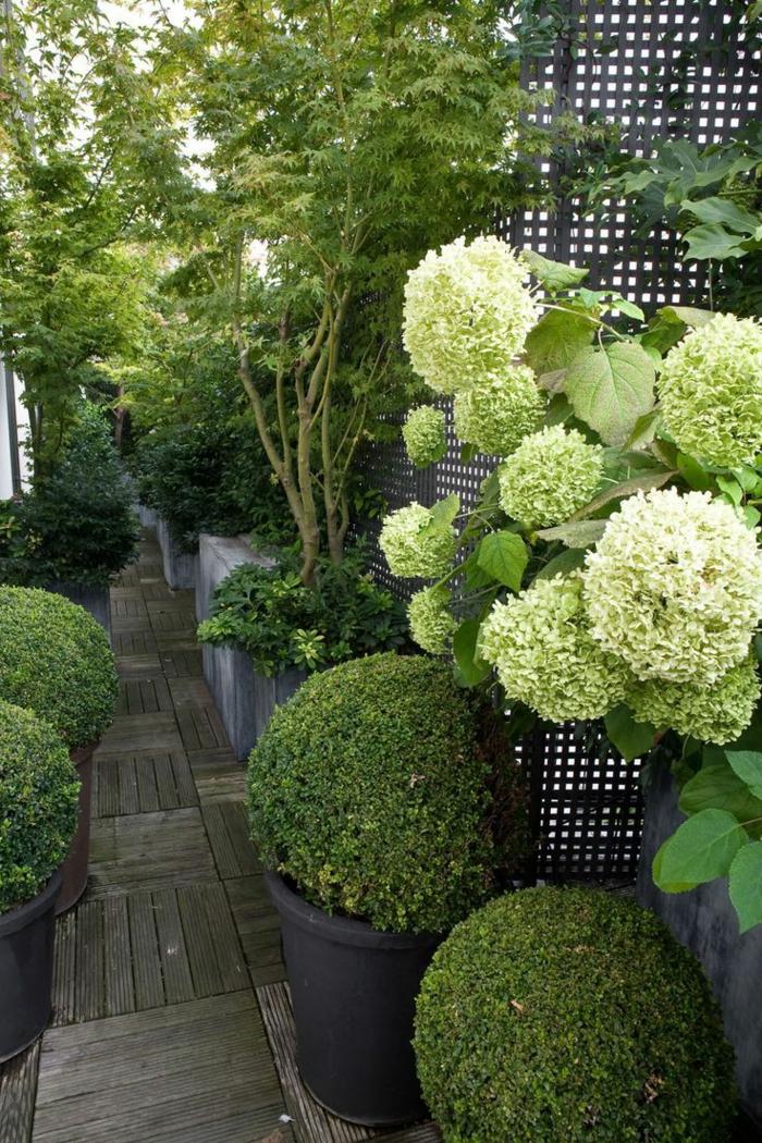 jardin-paysager-paysager-avec-pots-de-fleurs