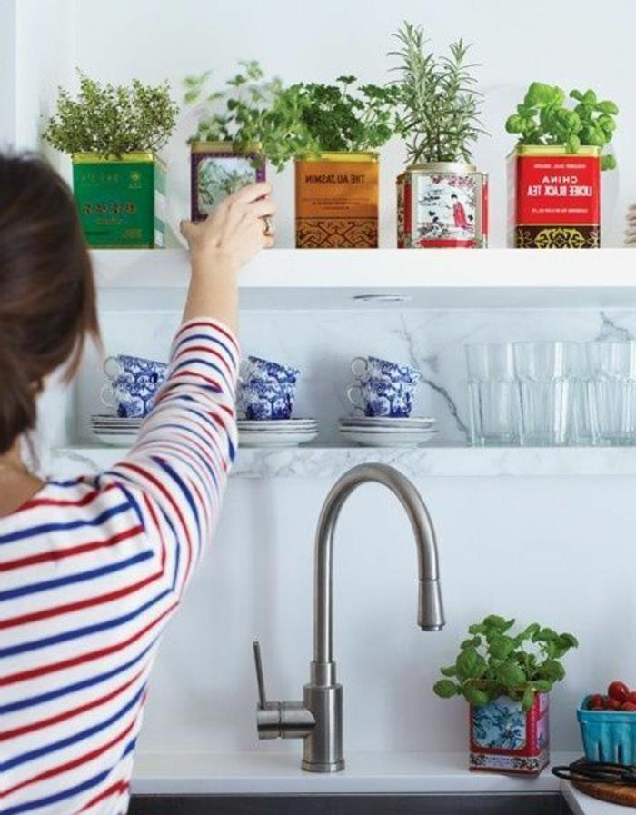 la-cérémonie-de-thé-boire-à-l-anglais-pots-plantes-vertes