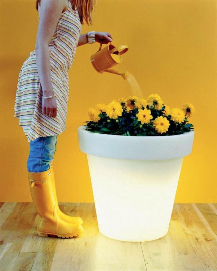le-plant-vert-dans-un-pot-fleur-lumineux-fleurs-jaunes