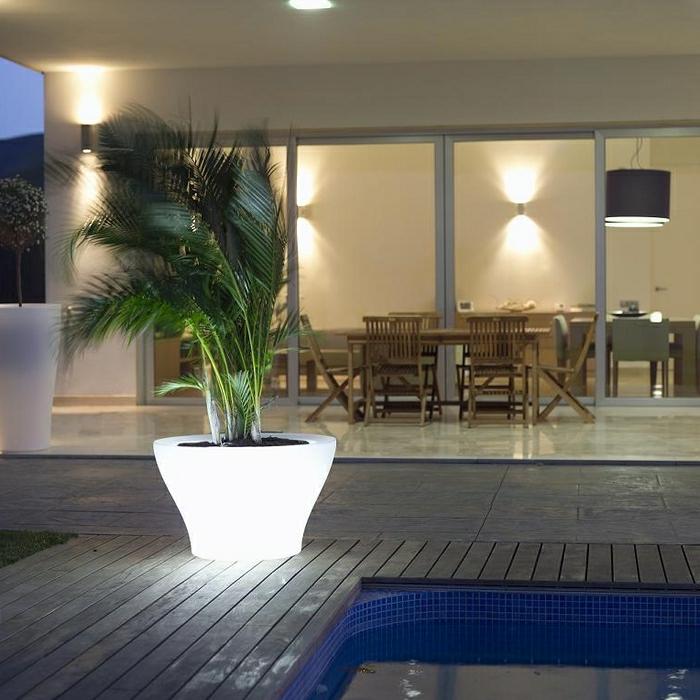 le-plant-vert-dans-un-pot-fleur-lumineux-piscine