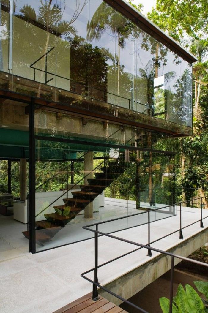 maison-de-verre-transparente-dans-le-foret-plantes-vertes