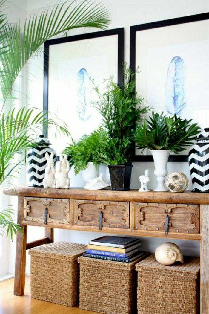 console d'entrée, plante verte