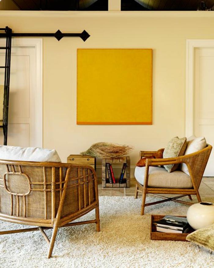 meubles-en-rotin-chaises-en-bois-chaise-osier-intérieur-maison-meubles-en-bois