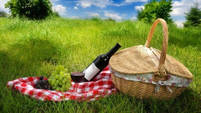 panier-pique-nique-jour-nature-pelouse-vin-grape