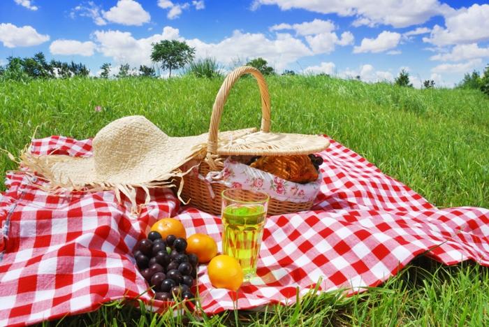 pique-nique-panier-picnic-idee