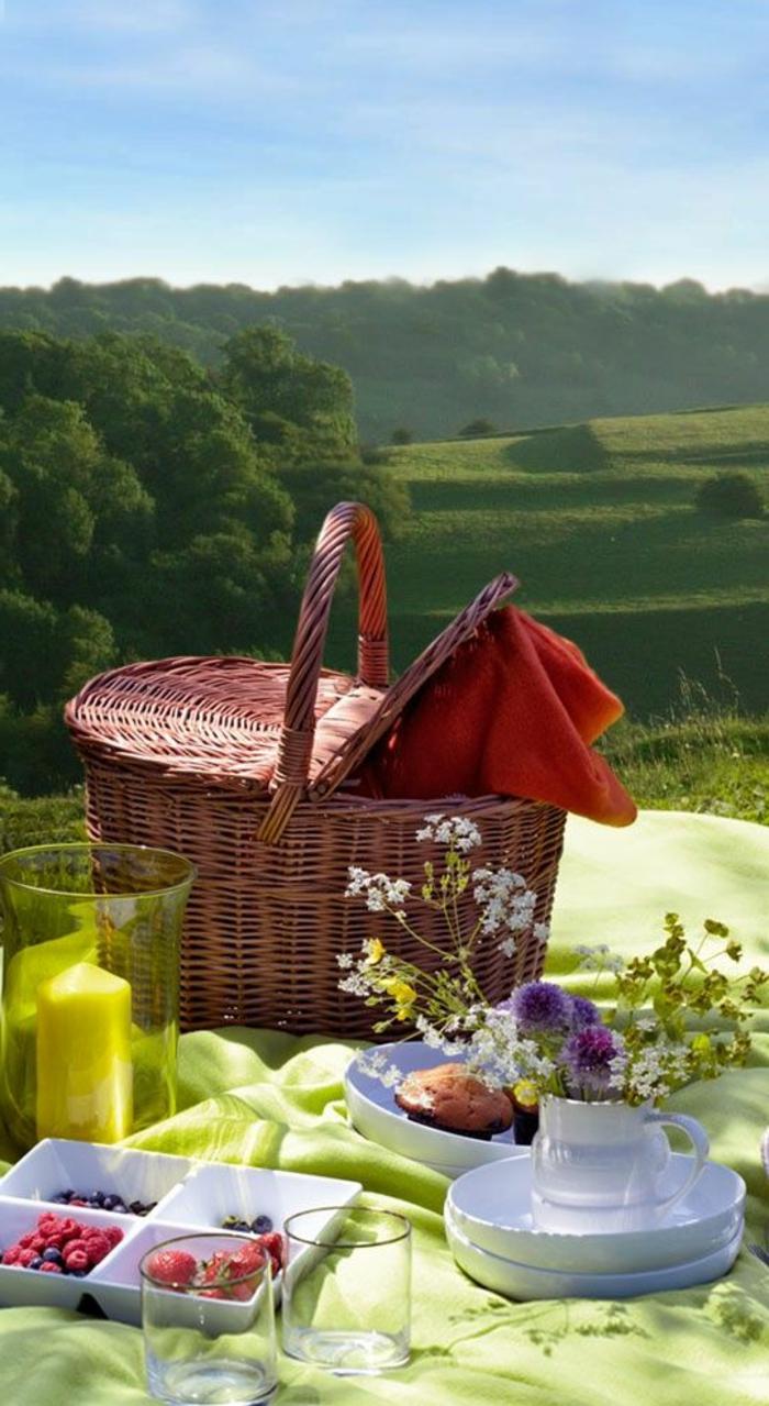 pique-nique-panier-picnic-fruits-nature-arbres
