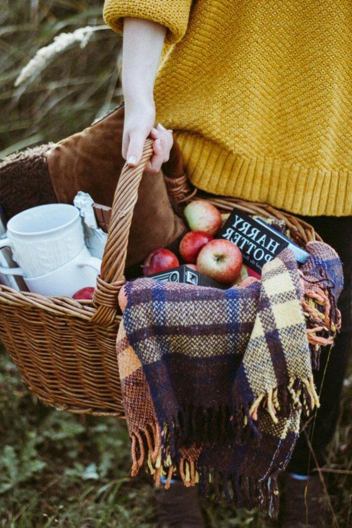 pique-niquer-avec-joli-panier-automne-pommes