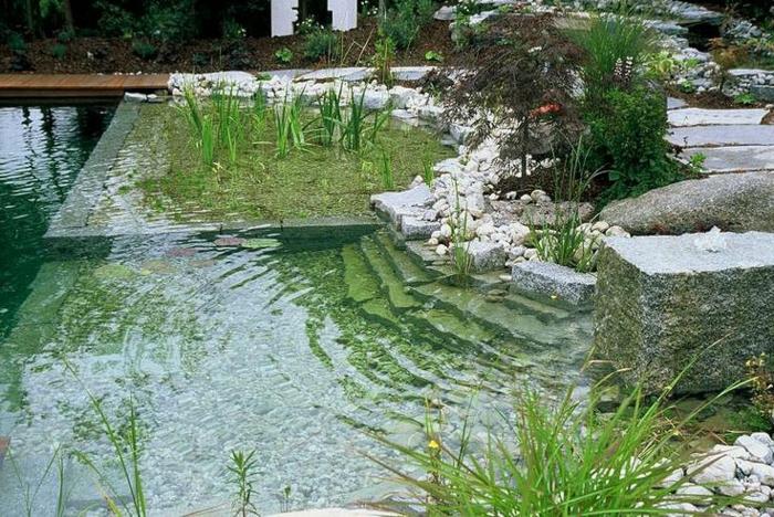 piscine-biologique-arrangée-et-zones-séparées