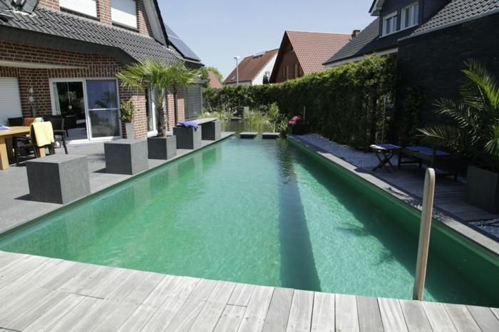 piscine-biologique-avec-une-petite-zone-de-régénération