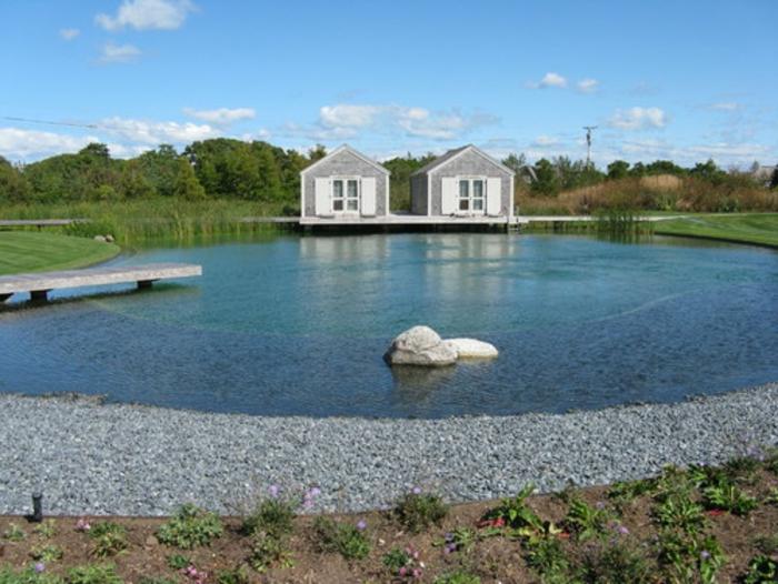 piscine-biologique-création-de-piscines-organiques