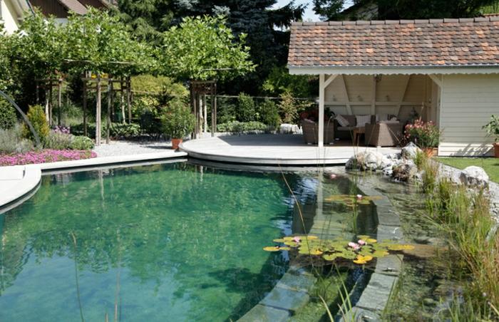 piscine-biologique-devant-une-petite-villa-blanche
