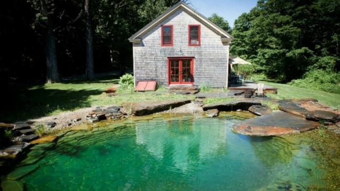 piscine-biologique-devant-une-petite-villa-sympathique