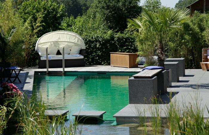 piscine-biologique-et-un-beau-jardin-aquatique