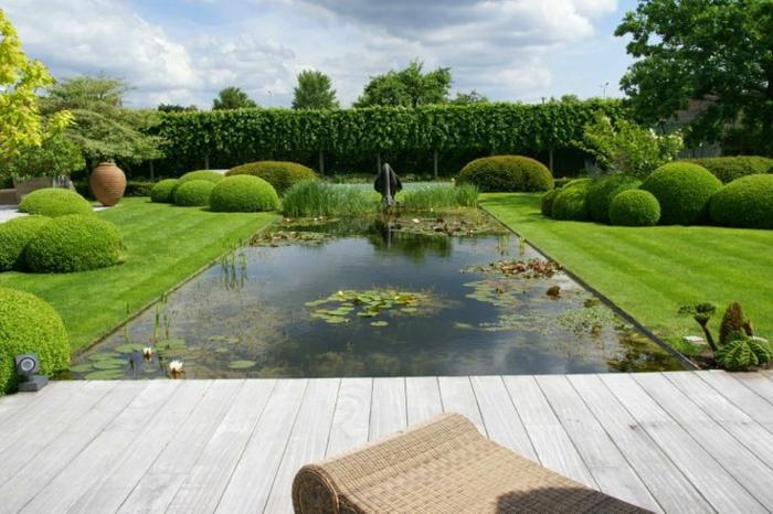 piscine-biologique-et-une-pelouse-verte-magnifique