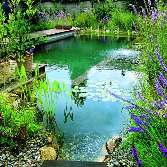 piscine-biologique-fantastique-et-terrasse-en-bois