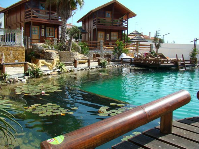 piscine-biologique-grande-piscine-organique-et-pont-en-bois