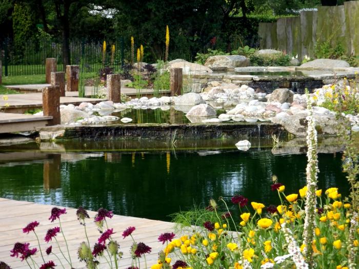 piscine-biologique-et-fleurs-splendides