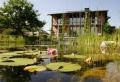 La piscine biologique – une solution éco-friendly pour votre jardin