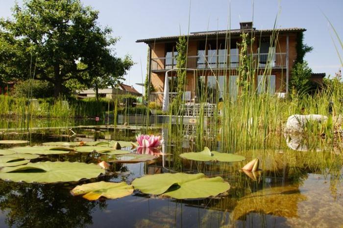 piscine-biologique-le-paysage-devant-votre-demeure