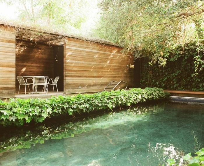 piscine-biologique-miraculeuse-et-bulgalow-en-bois