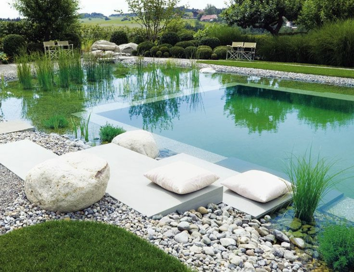 Baño Grande A Natural Swimming Pool:La piscine biologique – une solution éco-friendly pour votre jardin