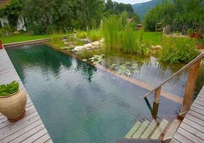 piscine-biologique-munie-d'escalier-en-bois