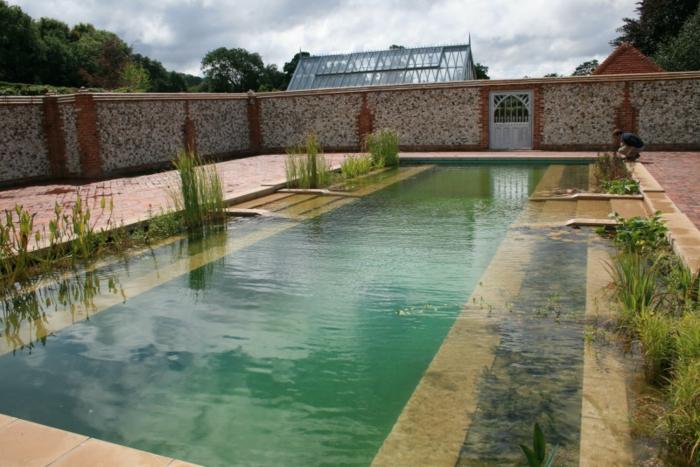 piscine-biologique-originale-pour-une-grande-cour