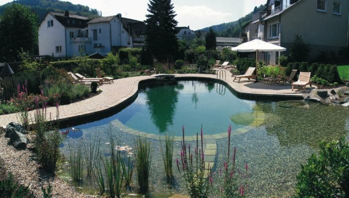 piscine-biologique-pavement-allée-de-jardin