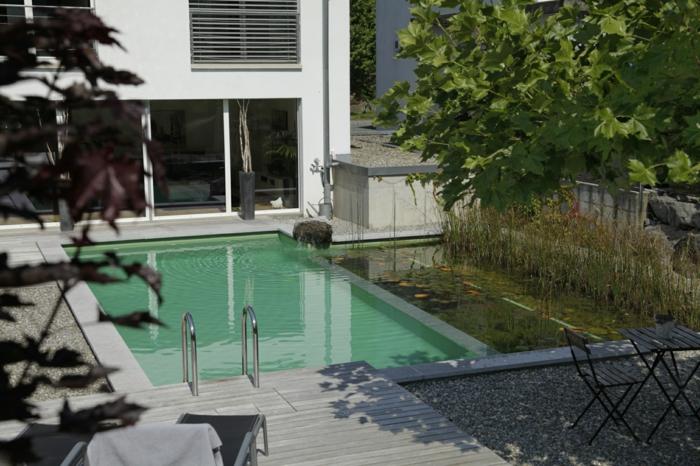piscine-biologique-petite-piscine-organique-dans-la-cour