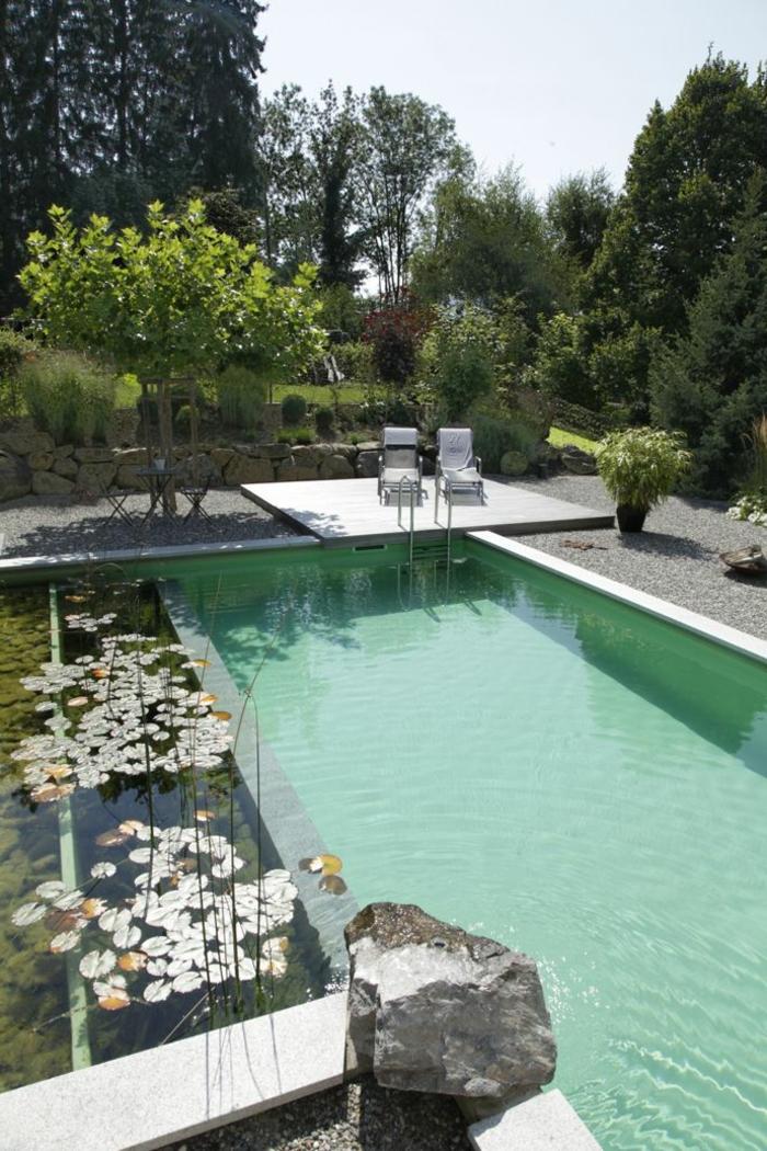 piscine-biologique-piscine-rectangulaire-limpide