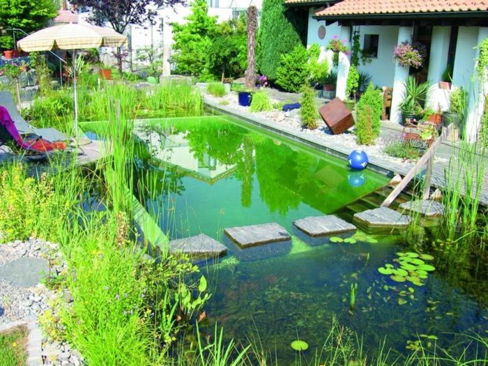 piscine-biologique-plonger-dans-le-paradis-aquatique