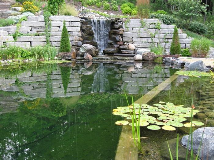 piscine-biologique-une-colline-avec-cascade