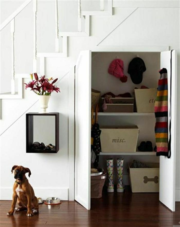 placard-sous-escalier-aménagement-sous-escalier-couloir-mur-blanc-chien-sol-en-parquet-foncé
