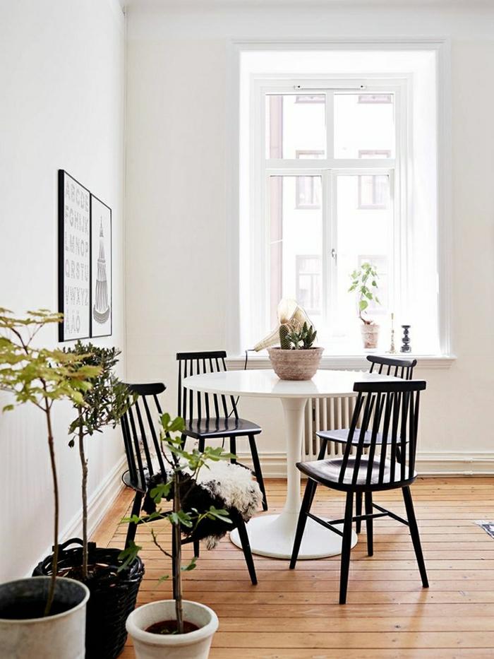 plancher-en-bois-table-plastique-chaises-en-bois-foncé-mur-blanc-peinture-murale