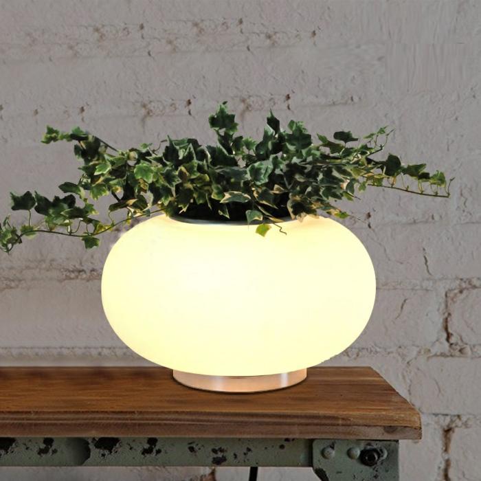 pot-de-fleur-lumineux-jardine-ronde-pot-verte-plante