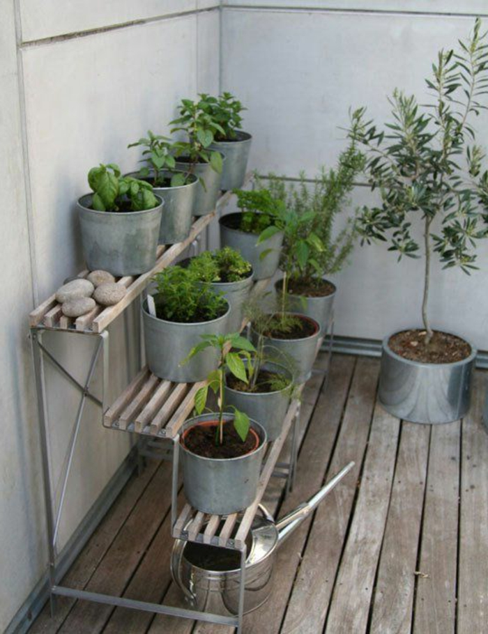 pot-de-fleur-plante-verte- terasse