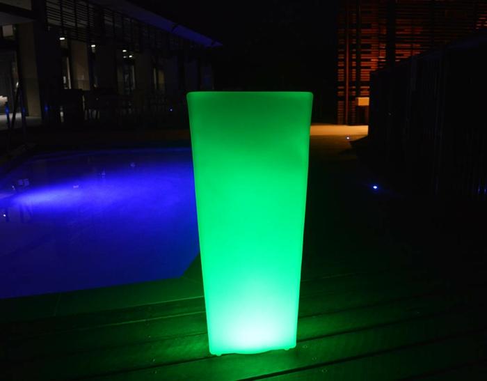 vert-illuminated-plante-pot-fleurs-nuit