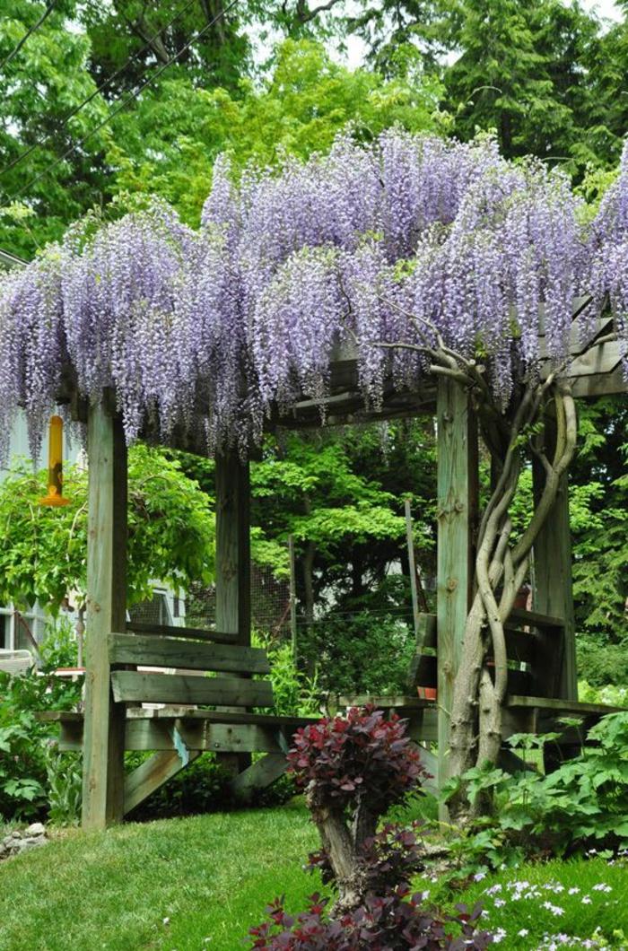 1-joli-jardin-avec-banc-de-jardin-bois-salons-de-jardin-leclerc-banc-d-extérieur-pelouse-verte