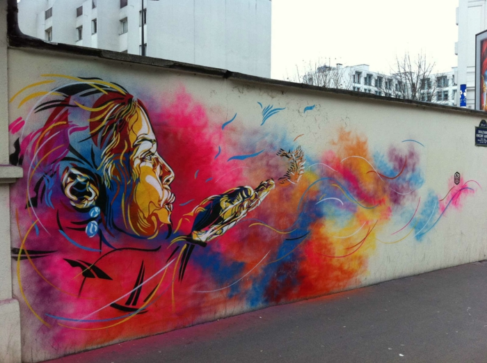 Art-urbain-C215-street-artiste-l-oiseau-femme-couleur