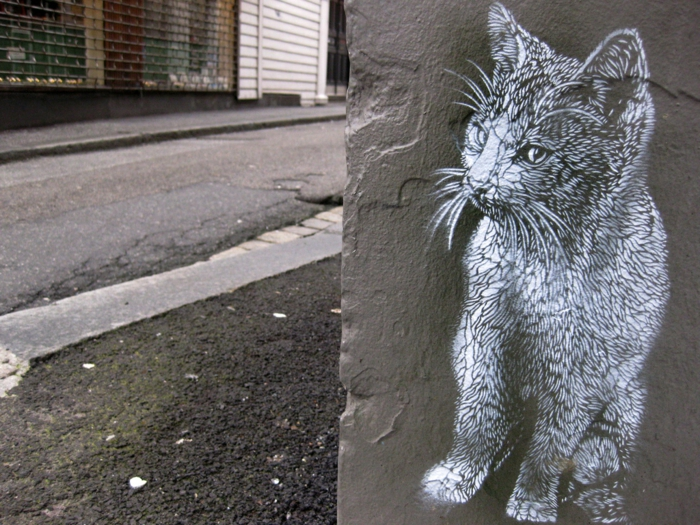 Street-artiste-rue-pochoiriste-C215-animaux-chat-animal