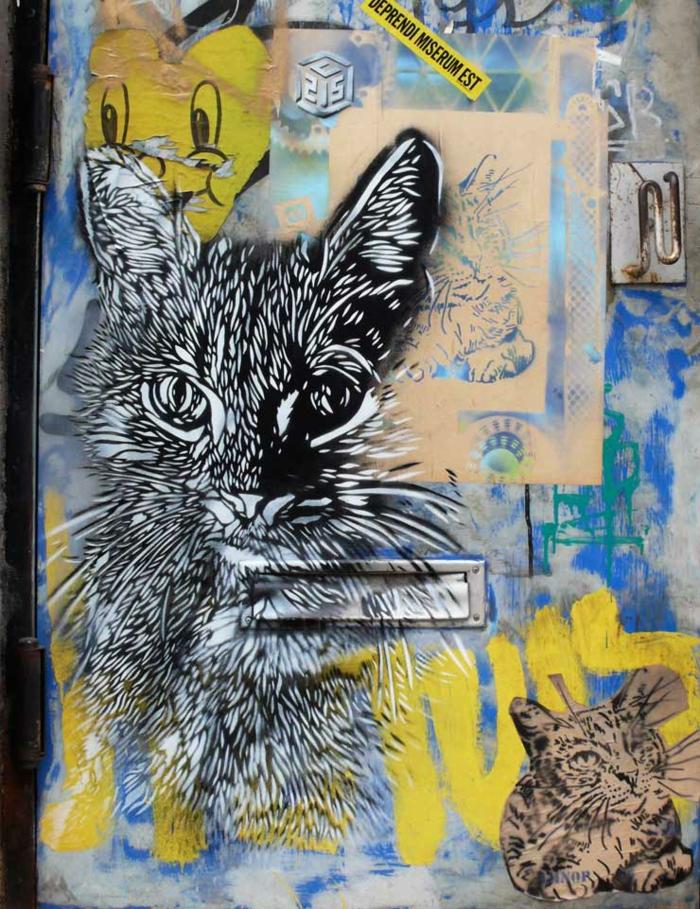 Street-artiste-rue-pochoiriste-C215-animaux-chat-blanc-et-noir