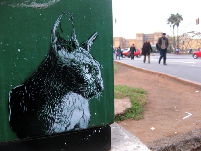 Street-artiste-rue-pochoiriste-C215-animaux-chat-noir-et-balnc