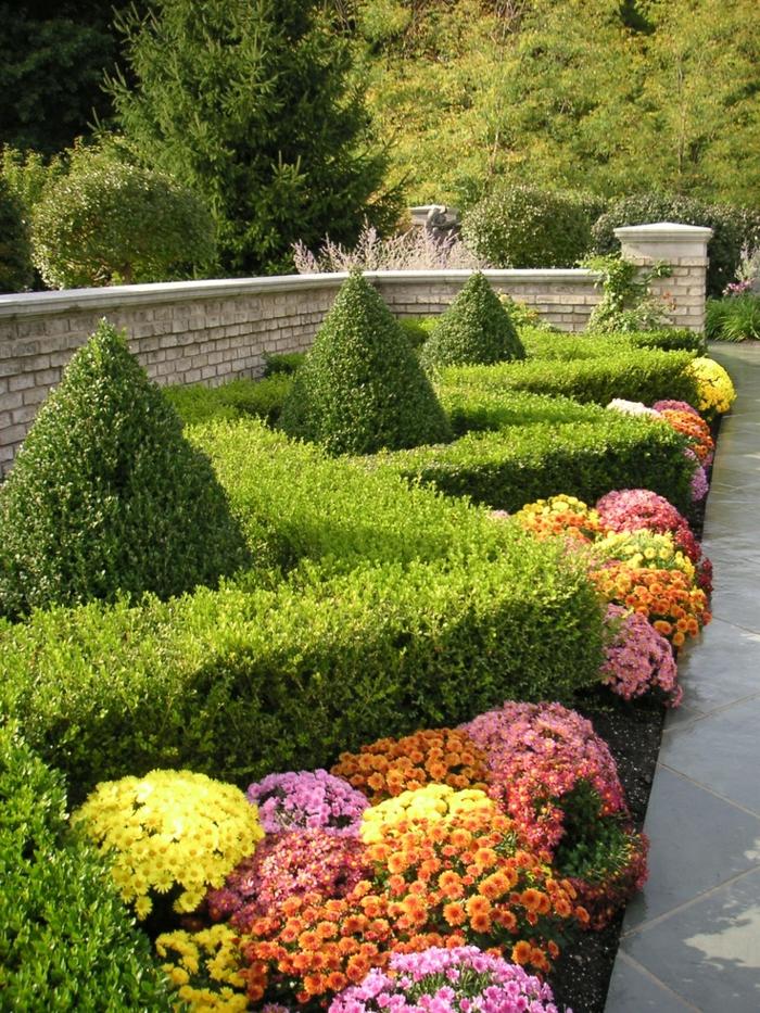 arbuste-de-haie-fleurie-extérieur-maze-fleurs