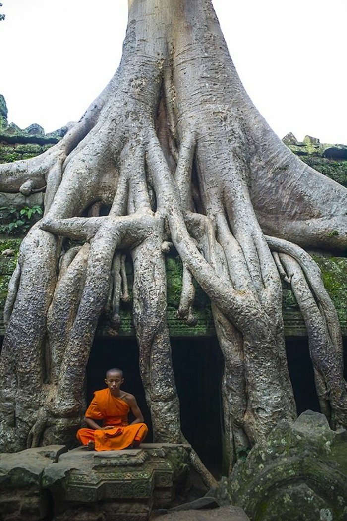 Pêle-mêle...  - Page 19 Architecture-vernaculaire-mystique-et-histoire-%C3%A0-Cambodge