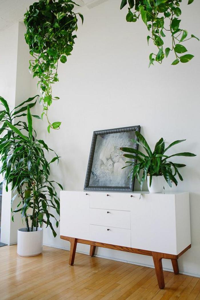 commode-blanche-console-et-décoration-avec-plantes-vertes